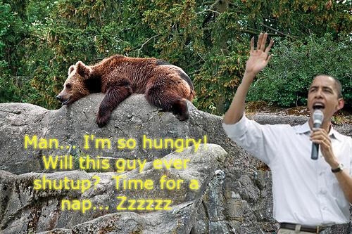obama-puts-bears-sleep