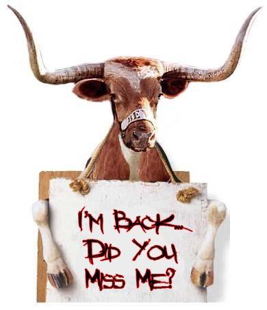 bull-holding-sign